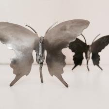 <p>Butterflies</p>